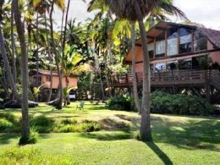 Main House (Cottage to left) - Black Sand Beach - Authentic A *REAL* Getaway! - Pahala - rentals