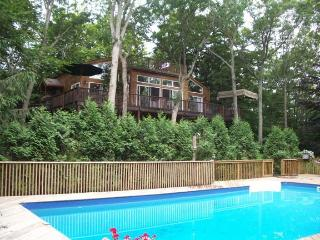 East Hampton Family  Retreat with Cottage - East Hampton vacation rentals