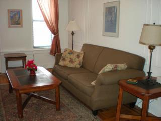 Fully furnished 1BR in charming Brooklyn nabe