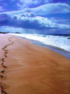 Footprints on the beach at 20 Mile, one of th Island's best, safest swimming and snorkeling spots.