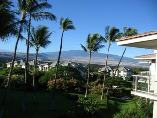 Vista D-301 Award Winner Penthouse w/BBQ and View, Waikoloa