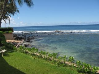 Poipu Beach House / Front Yard