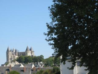 Saumur - Pays de la Loire. 2 rooms furnished flat