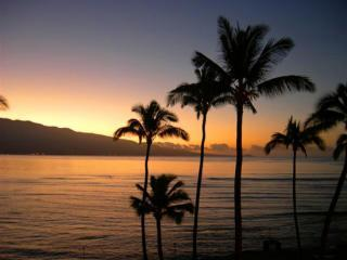 Romantic Ocean Views,  SUMMER SPECIAL $150 nt-, Wailuku