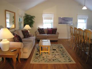 Light filled living room with 12 foot ceilings and large flat-screen TV..