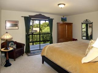 2nd Bedroom with Deluxe King Bed, 2 closets, large flat-screen TV/ DVD player. Deck, Great Views.