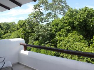 Views of nature from the Master Bedroom Terrace