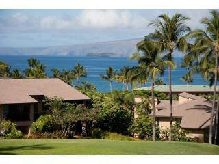 May and June Special $250.00 Open Nights, Wailea