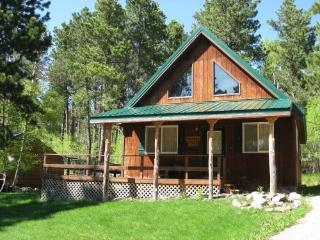 Cozy Black Hills Retreat - South Dakota vacation rentals