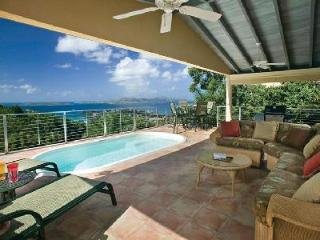 Ylang-Ylang - Charming luxury home with tropical surroundings, pool & beach activities nearby, Cruz Bay