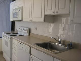 Stunning 1bd/1ba Downtown. Walk to Everything!!***, Chicago