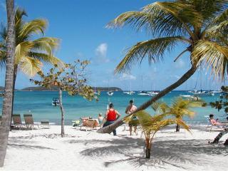 View from beach (Small).JPG - Beachtops..St Thomas - Red Hook - rentals