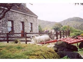 Traditional cosy  Stone Cottage with sea views, Kenmare
