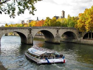 Central Paris Island Apartment with Wifi