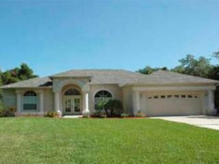 Manasota 14 - huge pool and games room, Englewood