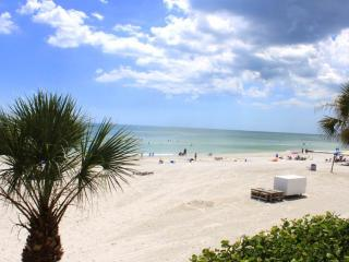 #102 at Arie Dam Condos, Madeira Beach