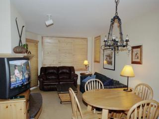 Silvermill, Large 1 BR Condo, King Bed, Low Rates, Dillon