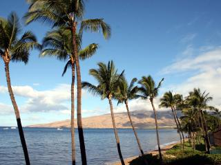 KIHEI BEACH, #305 - Kihei vacation rentals