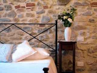 Casina di Rosa - cosy home in a village in Tuscany - Civitella Marittima vacation rentals