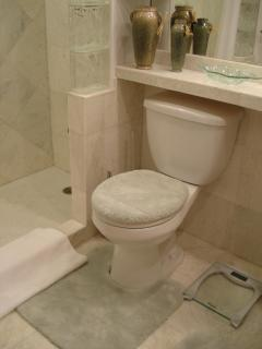 Marble shower and floor