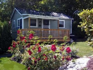 Cozy Inn-Lakeview House & Cottages - Weirs Beach