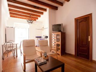 Deluxe 2Bedroom Apartment-Sevilla Old city Center
