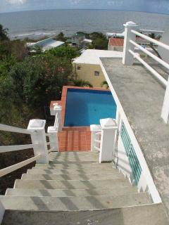 Steps lead from pool deck up to the roof.