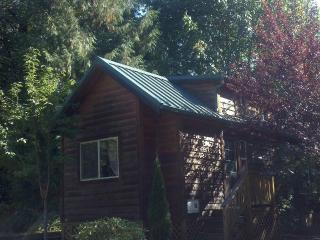 1 bdrm Cozy Mt Hood Cabin Retreat- pool and spa, Welches