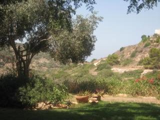 Holiday House by the Nature Reserve (B&B Optional), Zichron Yaakov