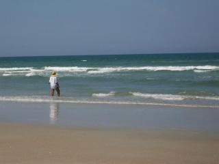 Come for a great vacation at our 'Beach Cottage', New Smyrna Beach