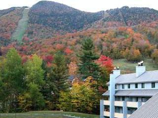 The Village of Loon Mountain
