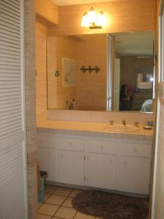 vanity area of Master bathroom; shower and toilet in separate room to right