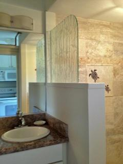Vanity and shower area
