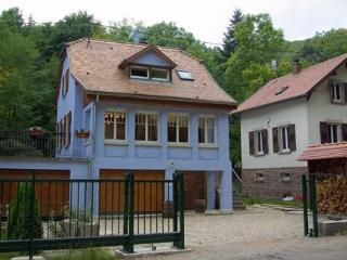 Luxury house in Alsace - sauna, hot-tub & log-fire - Alsace vacation rentals