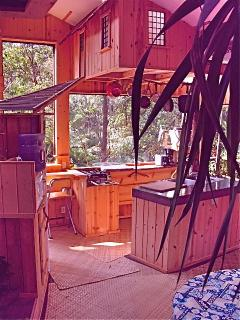 minny Treehouse over kitchen