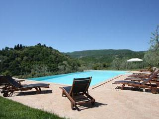 The fantastic pool surrounded by olives trees