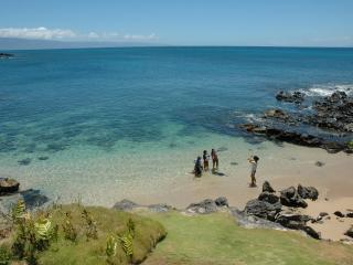 Perfect spot for the entire family. Beach view from villa, walk down a few steps to private cove