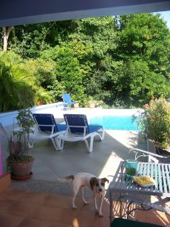 pool and deck from door to apartment terrace