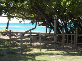 Your Gate to the Beach!