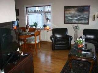 Reykjavik Centro Apartments (4 persons) - Iceland vacation rentals