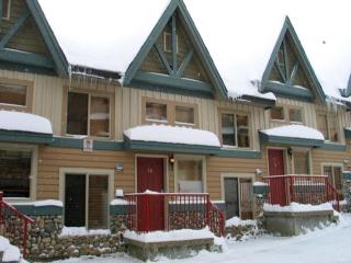 Big White 2 Bedroom, 3 Bathroom Condo (#28 - 7640 Porcupine Road TREETP28)