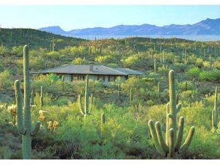 Tucson Vacation House in a Wildlife Sanctuary - Tucson vacation rentals