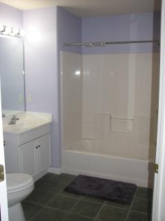 Master Bathroom - The shower curtain was removed for the picture.