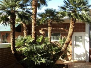 Charming NE Foothills Casitas-recent cancellation, Tucson