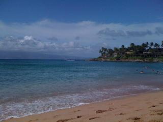 2 Bed. Private Unit just up the street from Beach!, Lahaina