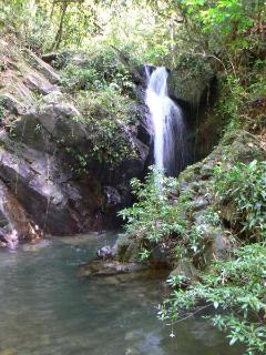 waterfall at nearby Jaguar Reserve