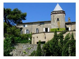 Chateau Carcassona - France vacation rentals