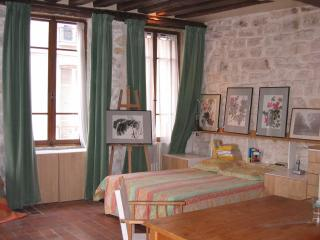 Artist's Studio in the Marais - 6th Arrondissement Luxembourg vacation rentals