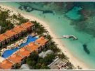 A birds eye view of beach and coral