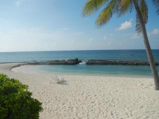 Cayman Paradise- Now booking for Summer 2015, Old Man Bay